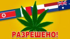 Список стран, в которых разрешены наркотики
