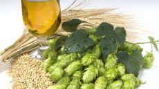 Рецепты и методы лечения различных заболеваний пивом