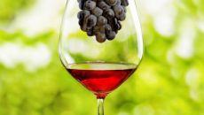 Сроки выведения вина из организма