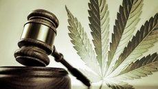 Содержание приказов по наркотикам