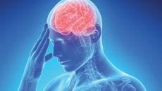Какое воздействие оказывает алкоголь на мозг и его сосуды