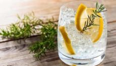 Правильное употребление джин-тоника