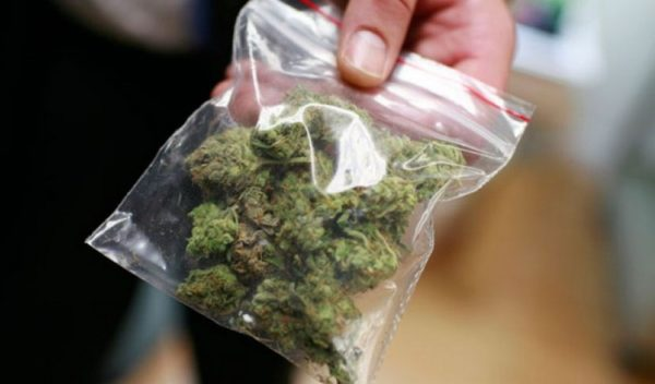 Изъята марихуана