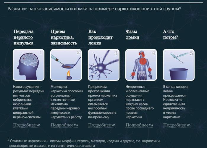 Механизм возникновения физической зависимости и ломки
