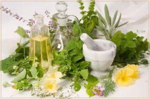 Настой некоторых растений