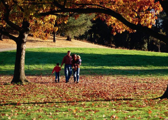 Выйти в парк, немного погулять, подышать воздухом