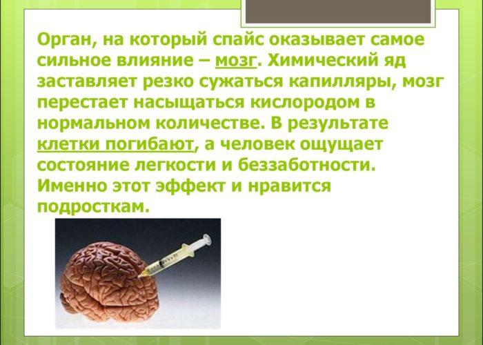 Влияние спайса на мозг