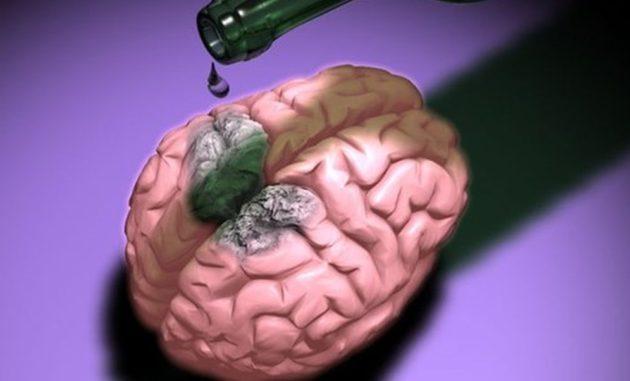 Воздействие этанола на мозг