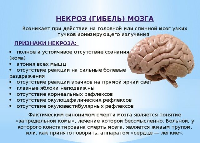 Некрозом клеток головного мозга