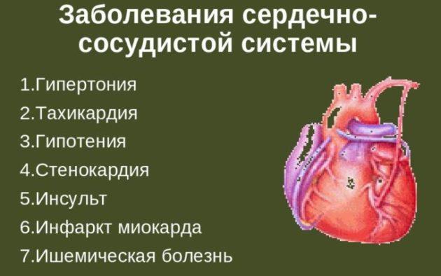 Заболевания сердечно-сосудистой и дыхательной системы
