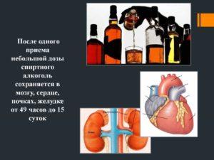 Алкоголь сохраняется в мозгу, сердце, почках, желудке от 49 часов до 15