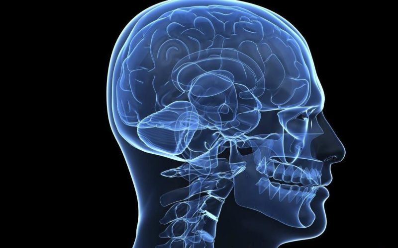 Дисфункциях костного мозга