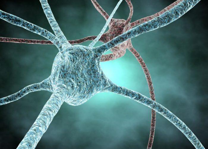Гибелью небольшого количества нейронов