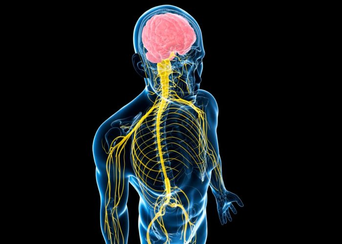 Интоксикацию нервной системы