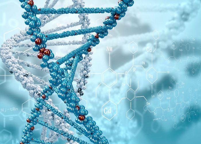 Изменение ДНК клеток эмбриона