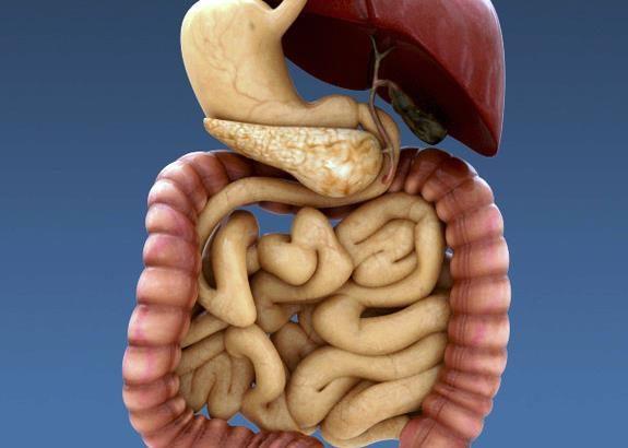 Когда нарушены процессы пищеварения