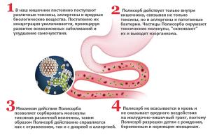 Механизм действия препарата в организме