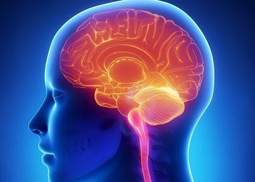 Нарушения работы нервной системы