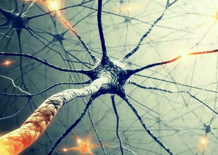 Нарушения в нервной системе