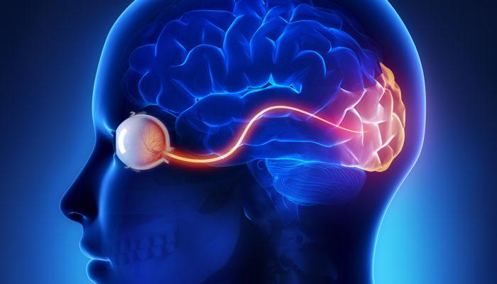 Отмирание зрительного нерва и сетчатки