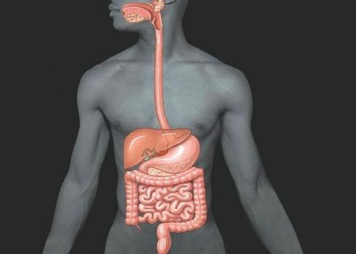 Расстройство пищеварительной функции