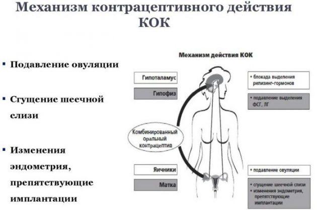 Виды и действие противозачаточных средств