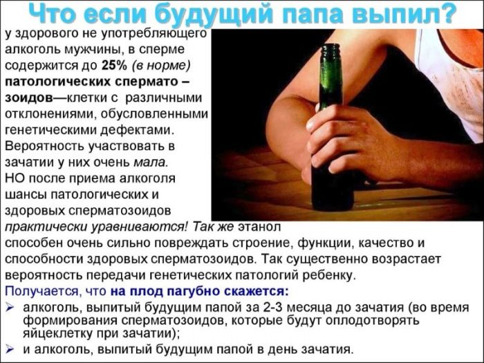 Вредит ли алкоголь сперме