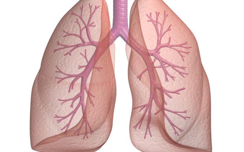 Воспалительных болезнях респираторного тракта