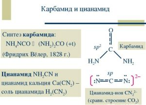 Фармакокинетика цианамида