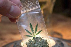 3 грамма марихуаны легально разрешаеться