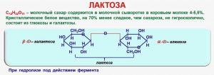 Что такое лактоза