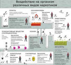 Механизм действия наркотиков на организм