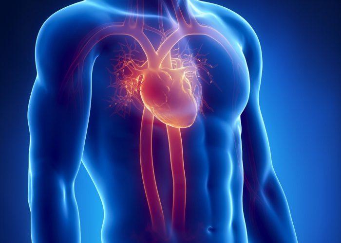 Наличие хронических или врожденных патологий сердечно-сосудистой системы