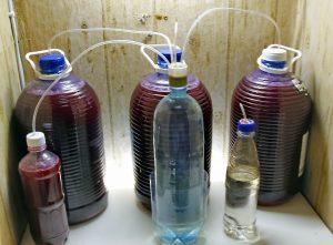 Очистка домашнего вина