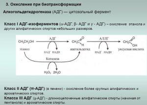 Окисление при биотрансформации