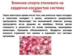 Пагубное действие этанола на кровь