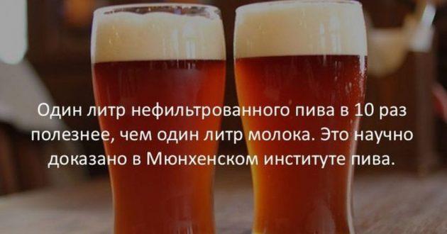 Польза нефильтрованого пива