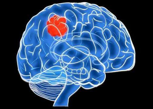 Ранее перенесенные инфекционные заболевания головного мозга