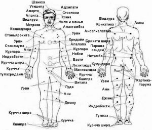 Схема акупунктуры тела человека