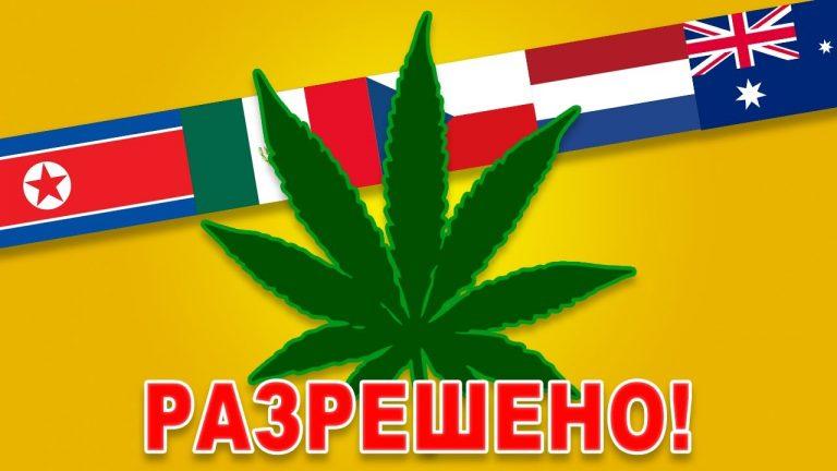 Страны, в которых разрешены наркотики