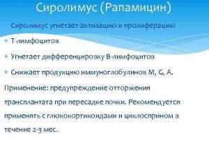 Свойства Рапамицина