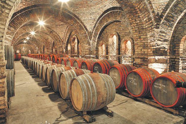 Венгрия – это рай для виноделов