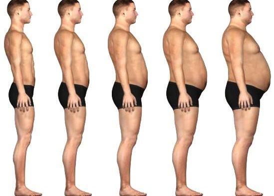 Вес и комплекция человека