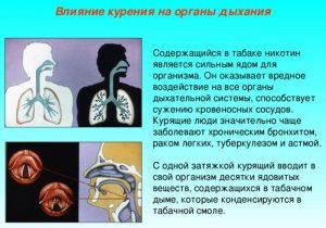Влияние курение на органы дыхания