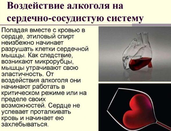 Воздействие алкоголя на сердечно-сосудистую систему