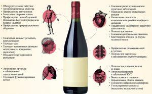 Вред и польза красного вина для организма