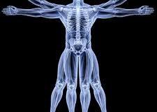 Заболевания костного скелета