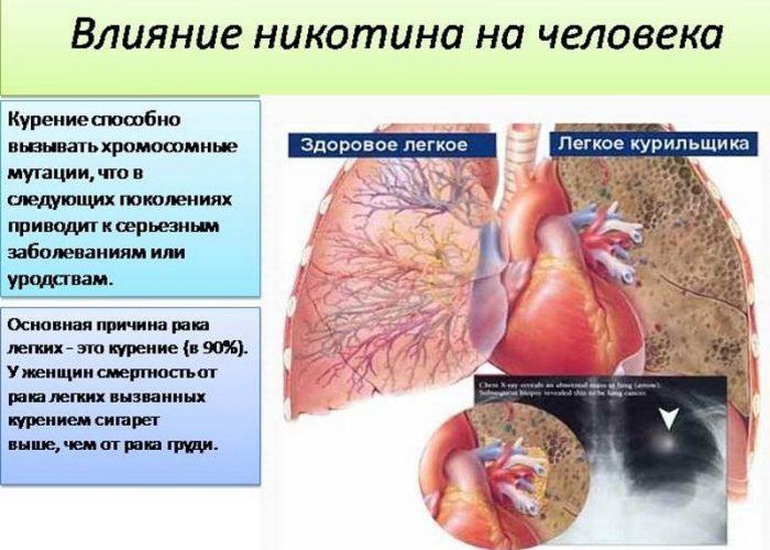 Сравнение органов здорового человека и курильщика
