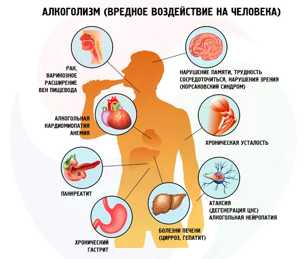 Аллокин-Альфа противопоказан в применении при алкоголизме