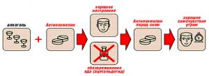 Антипохмелин - как работает